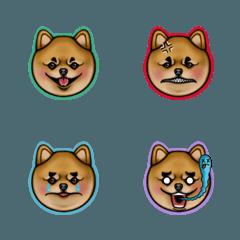 Chappie Bomei Pomeranian Puppy Doggy