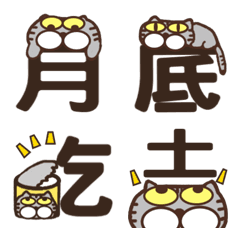 Cat Word cat language  fat belly cat 2