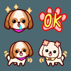 愛犬日記-シーズー-