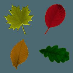 葉っぱの絵文字