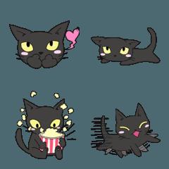 黒猫で表情2