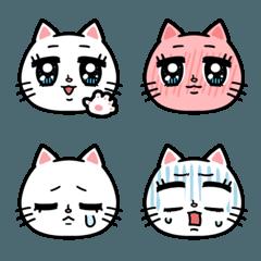 澄んだ瞳のネコ 〜basic〜
