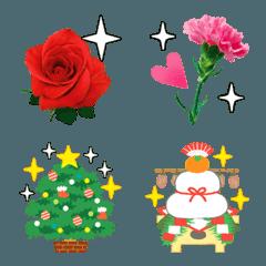 花の写真・お祝い絵文字