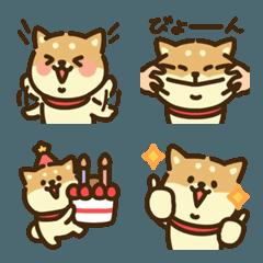 柴犬づくし3(赤毛)