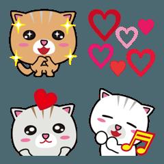 3匹の子ネコ!