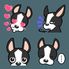 Adorable Boston Terrier  Emoji so cute