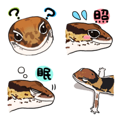爬虫類さんたち〜ニシアフ〜ノーマル