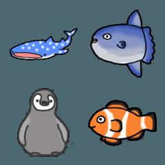 海の生き物たち~小さな水族館~