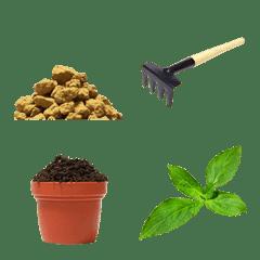 No money but soil