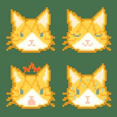 パンケーキ猫