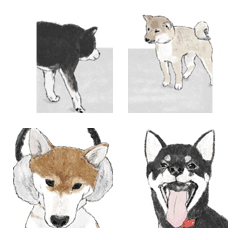 ほのぼのわんこたちの絵文字3(柴犬編)