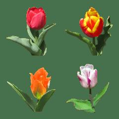 絵文字に花を♪チューリップ