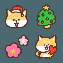 柴犬の冬★クリスマス&お正月など
