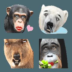 ウザい顔の動物の絵文字