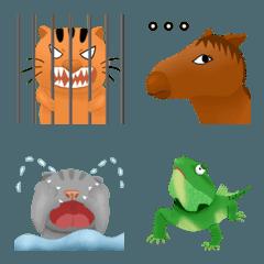animal in zoo