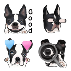 ボストンテリア犬の絵文字