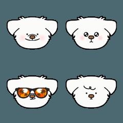 犬のシンバ