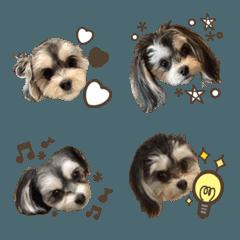 hani.emoji