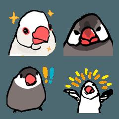 ラクガキ動物園3 文鳥