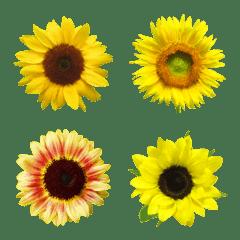 絵文字に花を♪ヒマワリ
