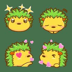 緑針鼠-Machaの様々な表情!