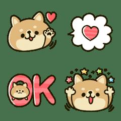 豆柴♡フェイス