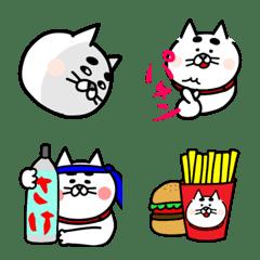 猫のおっさん3