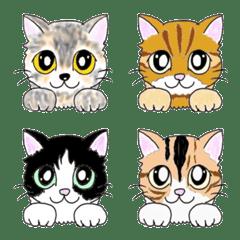 可愛い猫 ねこ ニャンコ