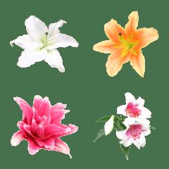 絵文字に花を♪ユリ