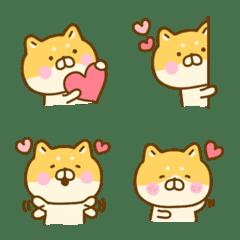 きもち伝わる♡ゆる柴犬