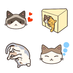猫カフェ我が家のにゃんこたち(修正版)
