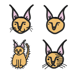シュール 猫みたいな動物 カラカル