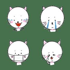 頭のデカい猫