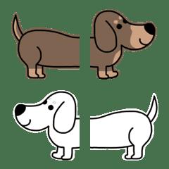 ベージュが映える犬◆◆ダックス編◆◆