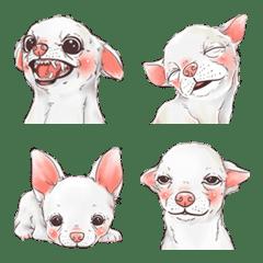 子犬かわいい犬 2
