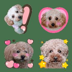 レモン&ライチ&カリン絵文字♡