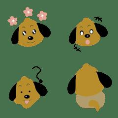 Everyday little green dog