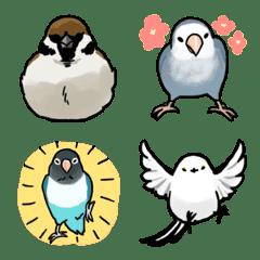 マイペースな小鳥2