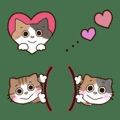 ♥♡ミケ猫とトラ猫の日常♡♥