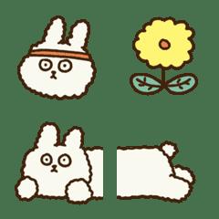 Bichon Rabbit