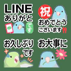 ラクガキ動物園52-5【マメルリハインコ2】