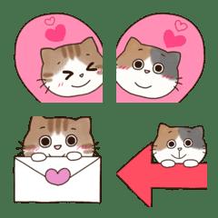 ♡♥ミケ猫とトラ猫の日常♥♡#2