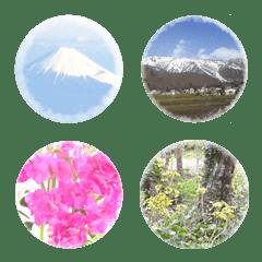 癒しの風景画像 花鳥風月3